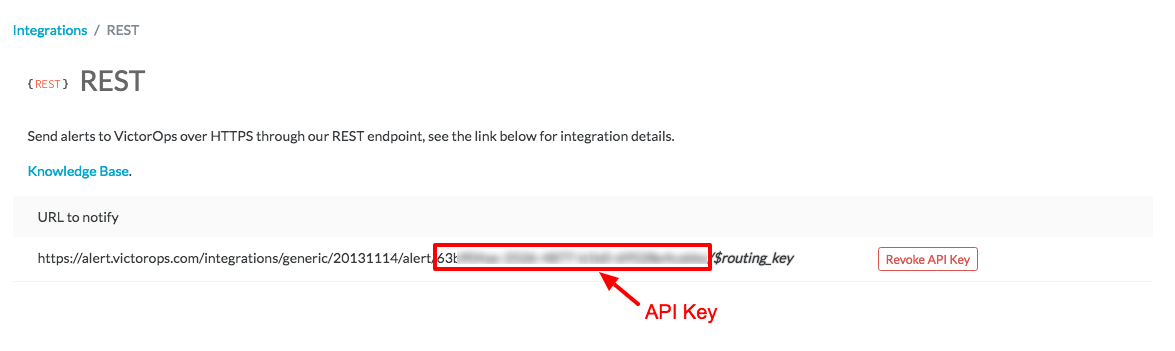 view API key