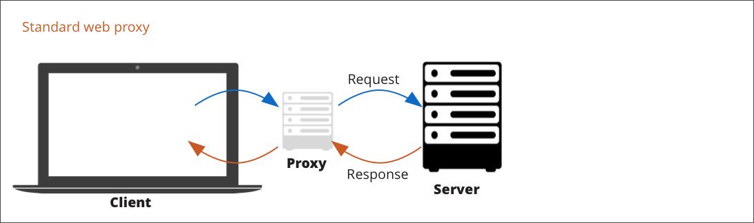 Standard web proxy flow