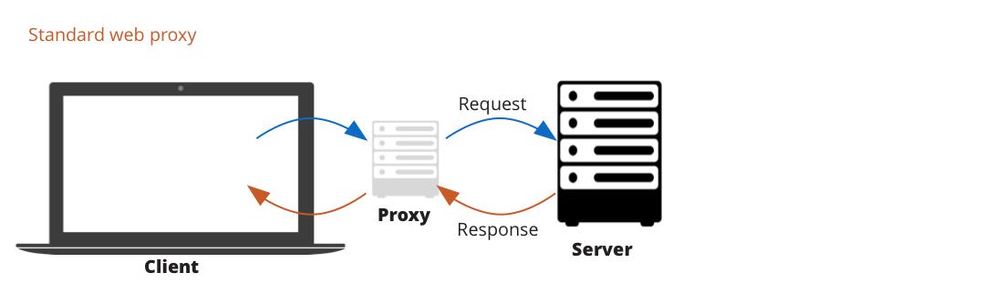 standard web proxy