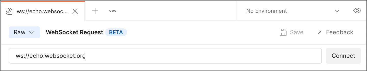 WebSocket server URL
